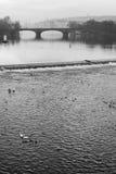 River Vltava Stock Photo