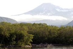 The river and volcano Royalty Free Stock Photography