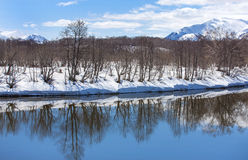 River, volcano, snow-covered forest and blue sky in early spring Royalty Free Stock Images