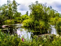 River Vuoksa stock photo