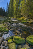 River Vydra Royalty Free Stock Images