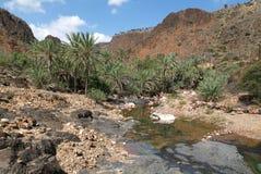 River of Wadi Daerhu at Socotra island Stock Photo