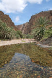 River of Wadi Daerhu at Socotra island Stock Image