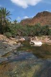 River of Wadi Daerhu at Socotra island Royalty Free Stock Photo