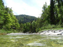 River Walchen near Sylvenstein lake Royalty Free Stock Photos