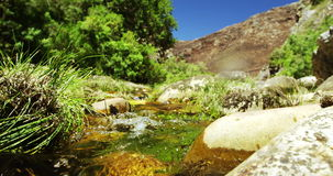 River water flowing through rocks and grass stock video footage