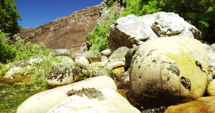 River water flowing through rocks and grass stock footage