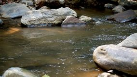 River Water Flows over Rocks in the Mountains in the Forest. In Thailand stock video
