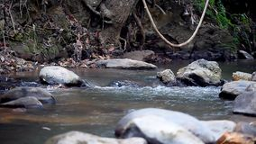 River Water Flows over Rocks in the Mountains in the Forest. In Thailand stock video footage
