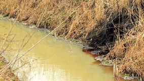 River Water Pollution And Contamination from Chemical Industry Factory Sewage stock footage