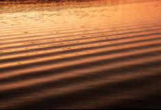 River water pond reflection reflections texture wave ripples sunset sun Stock Images