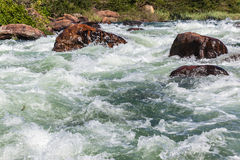River Water Rapids Valley Stock Photography