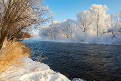 The river water and rime of forest Royalty Free Stock Image