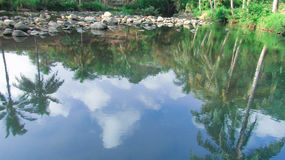 River water is very clear Royalty Free Stock Photos