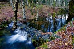 River Stock Photo