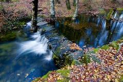 River Stock Image