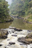 River with waterfall on a rainforest Royalty Free Stock Photo