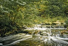 Slow running river in spring stock images
