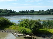 River, Waterway, Nature Reserve, Bank stock images