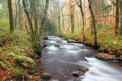River Webburn Stock Image