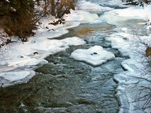 River in winter. Flower river in the midst of winter Royalty Free Stock Images