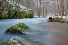 River in winter. Low angle view on a river in winter Stock Image