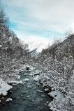 River in the winter forest runs to the foot of the mountains stock photos