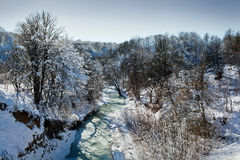 River in winter forest Royalty Free Stock Image