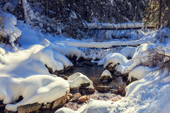 River in the winter mountain forest. Stock Photo