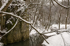 River in winter. Near the rocks (Ojcowski National Park, Poland Stock Image