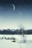 River winter night. Royalty Free Stock Photo