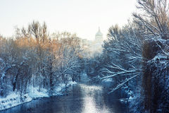 River in winter park Royalty Free Stock Photo