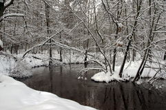 River in the winter. Stock Image