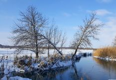 River in the winter royalty free stock photography