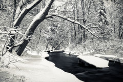 River in Winter time Royalty Free Stock Photo