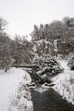 River in winter. Time in Ojcowski National Park (Poland Stock Image