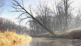 River in the winter time stock video footage