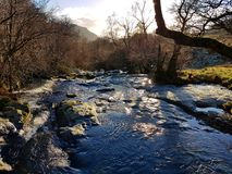 River and winter trees, Aira Force, lake district stock photo