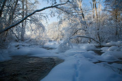 River in winter view. A snow covered river, hard contrast, desaturated colors, vignetting added, sunny shine Stock Photos
