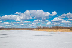 River in winter. River wiht ice in winter royalty free stock image