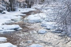 River in wintry forest Stock Images