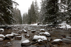 River  witner time Stock Photography