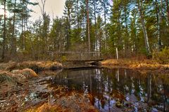 River and wooden bridge at Store Mosse, Sweden Royalty Free Stock Image