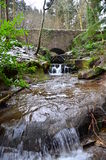 River in Woodland Royalty Free Stock Photo