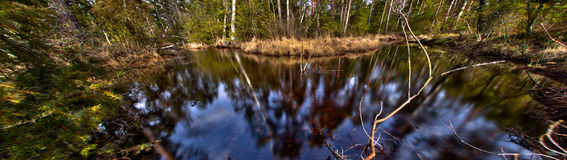 River in the woodlands at Store Mosse, Sweden Stock Images