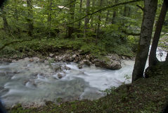 River through the woods. Hiking through the Bavarian Alps of Southern Germany stock image