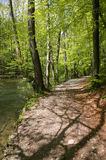 River Wuerm in spring, Starnberg area, Bavaria, Germany Royalty Free Stock Photos