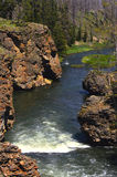 River in Yellowstone. A vertical view of a river and small waterfall in Yellowstone National Park Stock Image