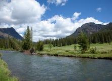 River through Yellowstone Stock Photo