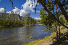 River in Yellowstone National Park. Scenic view of river flowing through Yellowstone National Park, California, U.S.A Stock Photos